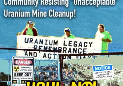 """URGENT ACTION ALERT: Support Diné Community Resisting """"Unacceptable"""" Uranium Mine Cleanup"""